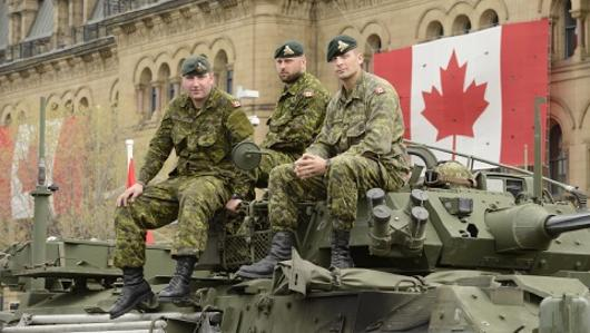 Interoperability within the Canadian Armed Forces and Lessons from
