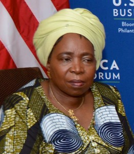 Nkosazana_Dlamini-Zuma_2014