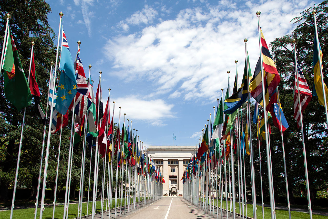 1280px-United_Nations_Flags_-_cropped