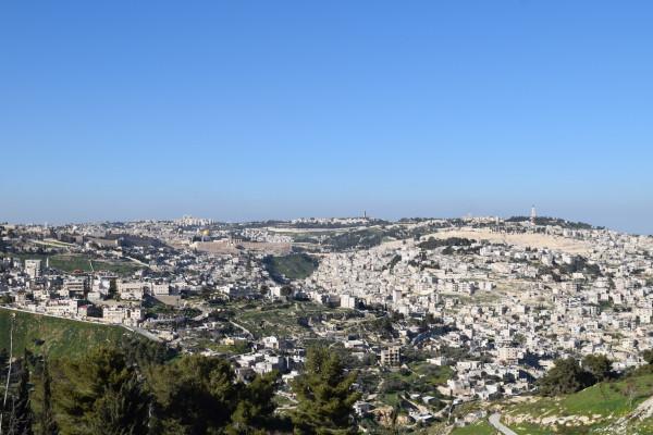 Israel&Palestine2015 106