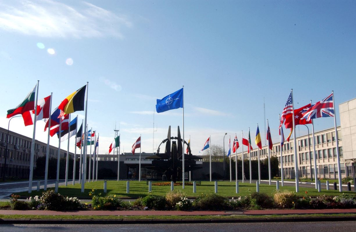 NATO field resized